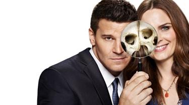 torrent bones season 10
