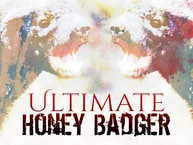 Ultimate Honey Badger