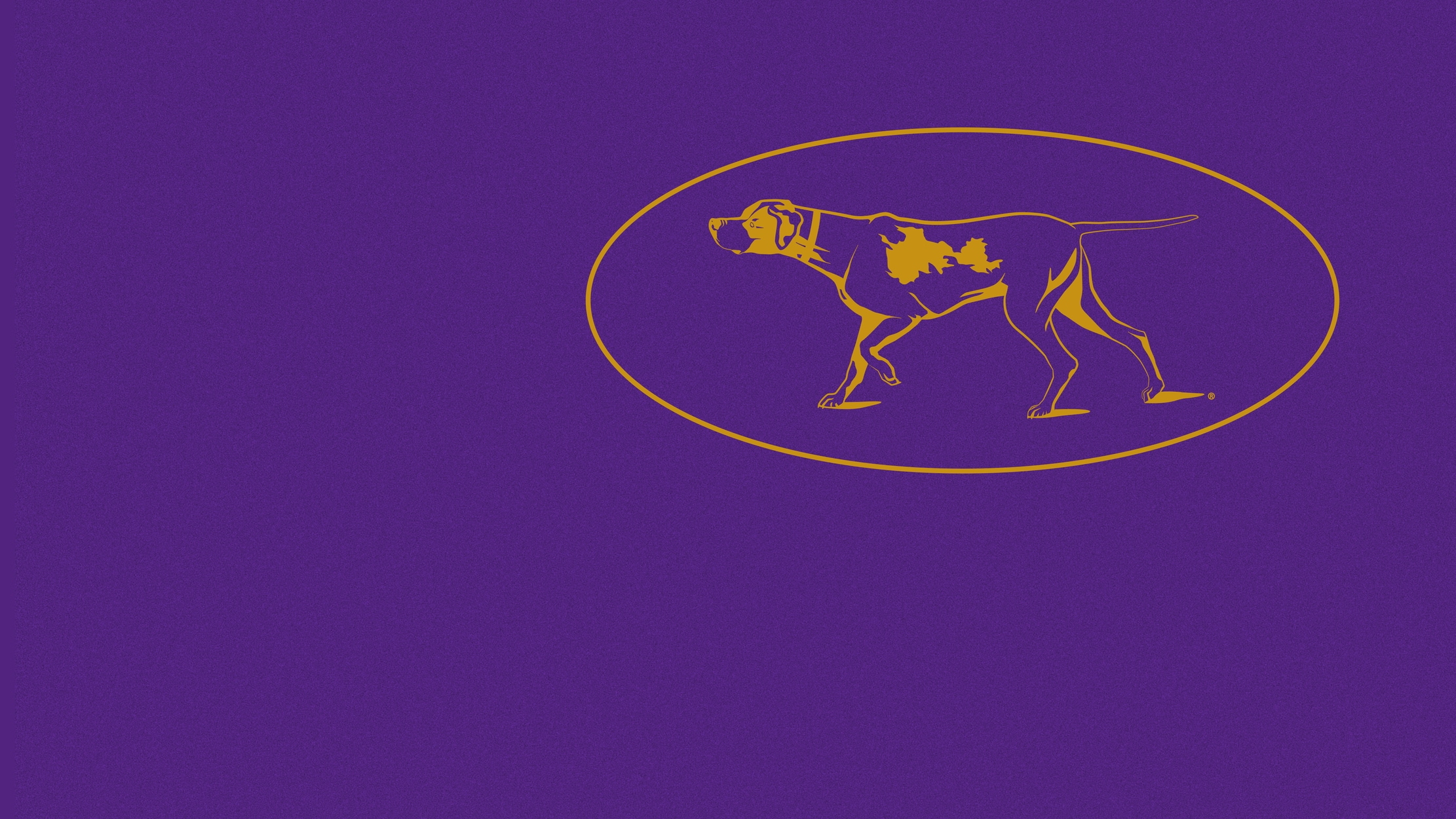 145th Westminster Kennel Club Dog Show Highlight Show seriesDetail
