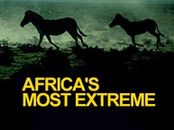 Africa's Most Extreme