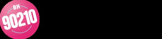 BH90210 logo