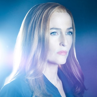 Special Agent Dana Scully Gillian Anderson The X-Files