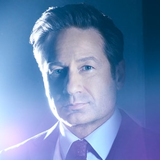 Special Agent Fox Mulder David Duchovny The X-Files