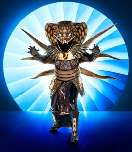 Costume Serpent The Masked Singer