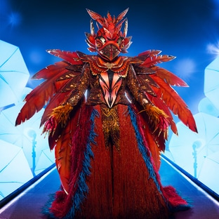 Mask Phoenix The Masked Singer