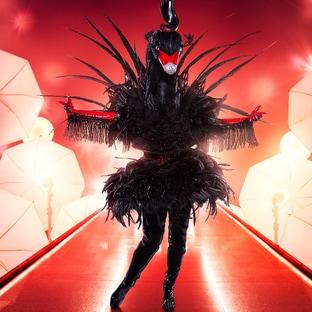 Mask Black Swan The Masked Singer