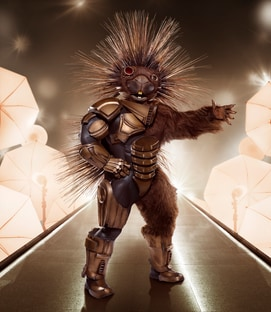 Mask Porcupine The Masked Singer