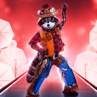Mask Raccoon The Masked Singer