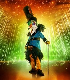 Mask Mallard The Masked Singer