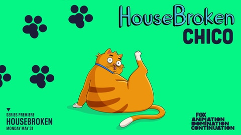 Housebroken Meet Chico This Summer On An All New Series 2021-04-10