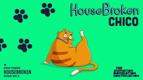 Housebroken Meet Chico This Summer On An All New Series 2021-04-10