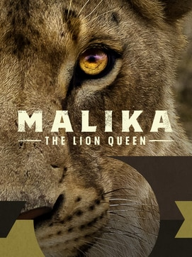 Malika the Lion Queen dcg-mark-poster
