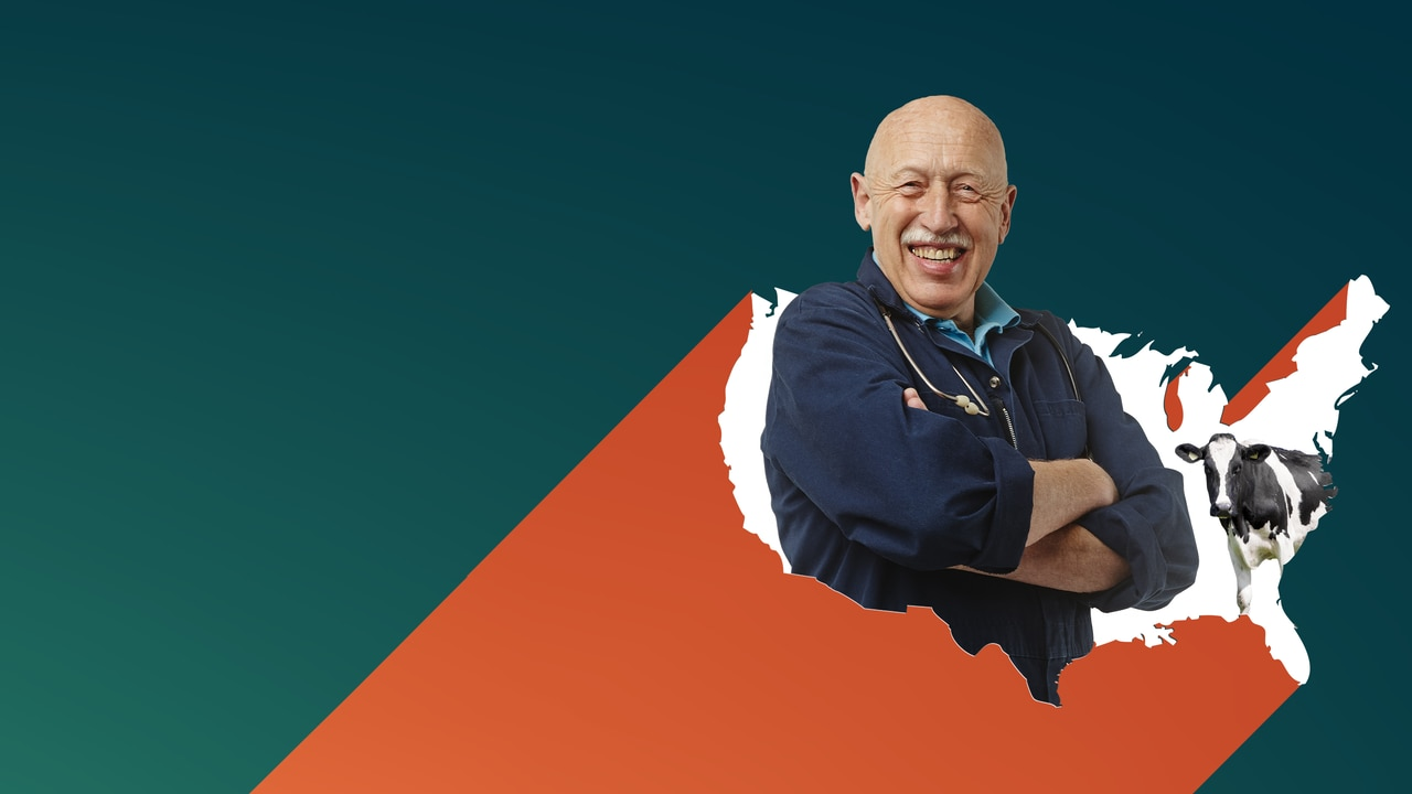 Watch The Incredible Dr. Pol: \