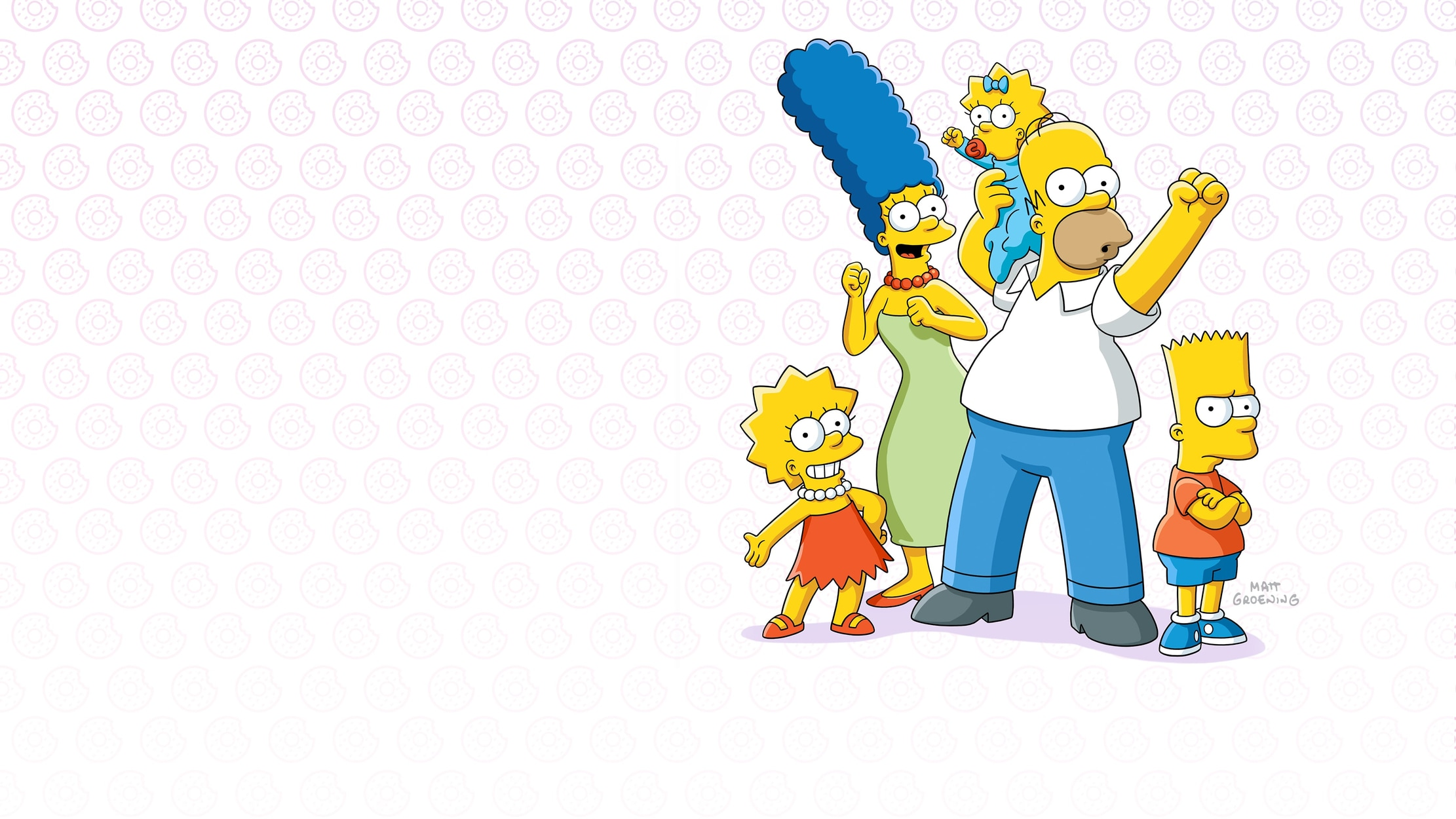 The Simpsons seriesDetail