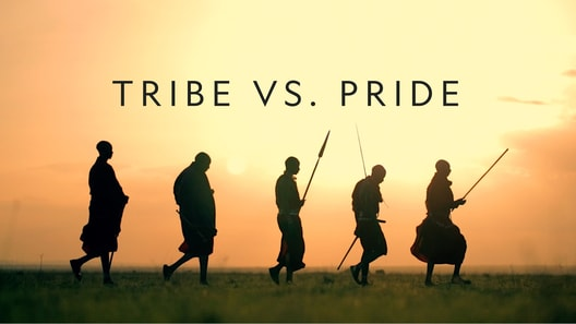 Tribe vs. Pride
